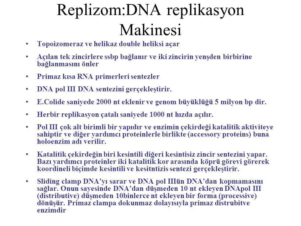 Replizom:DNA replikasyon Makinesi