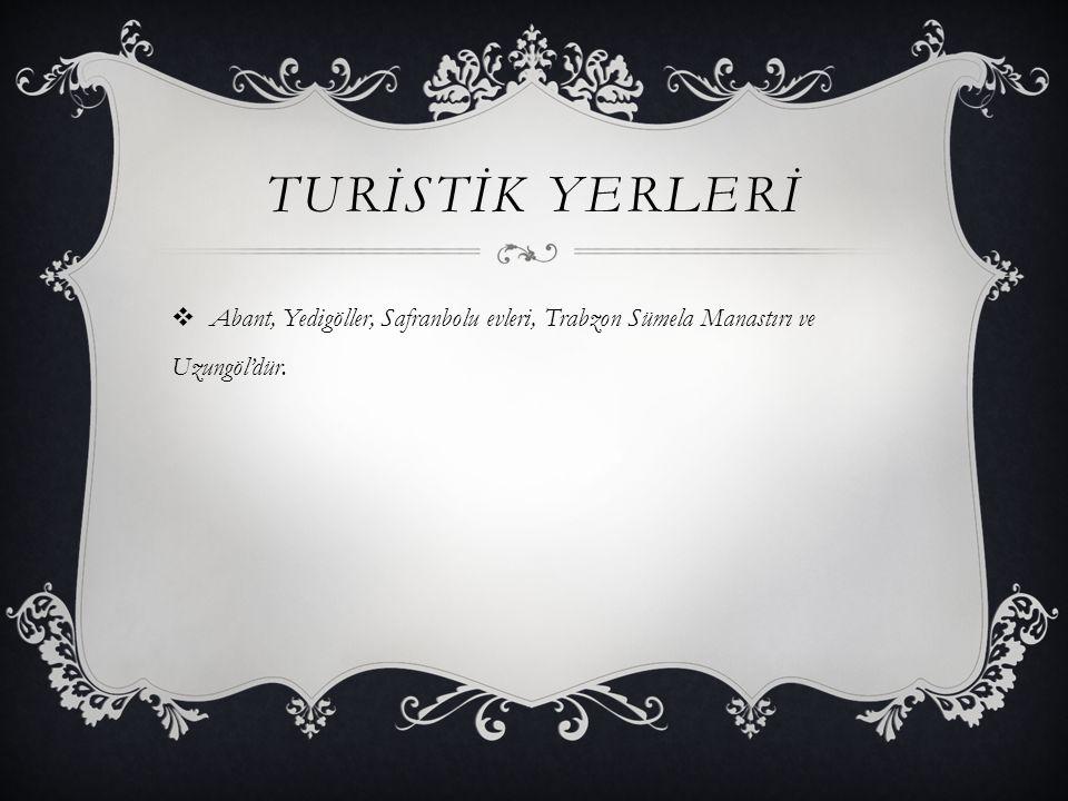 TURİSTİK YERLERİ Abant, Yedigöller, Safranbolu evleri, Trabzon Sümela Manastırı ve Uzungöl'dür.