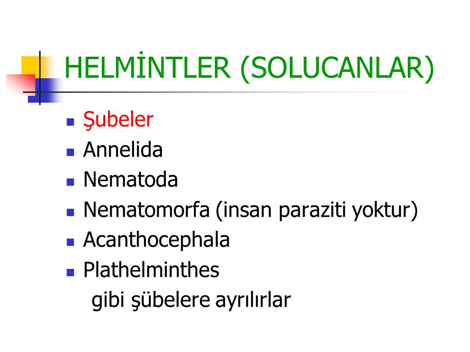 HELMİNTLER (SOLUCANLAR)