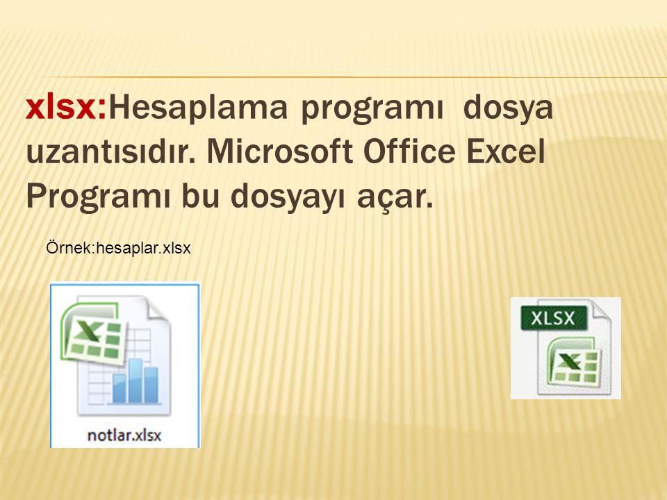 xlsx:Hesaplama programı dosya uzantısıdır