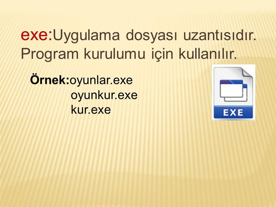 exe:Uygulama dosyası uzantısıdır. Program kurulumu için kullanılır.