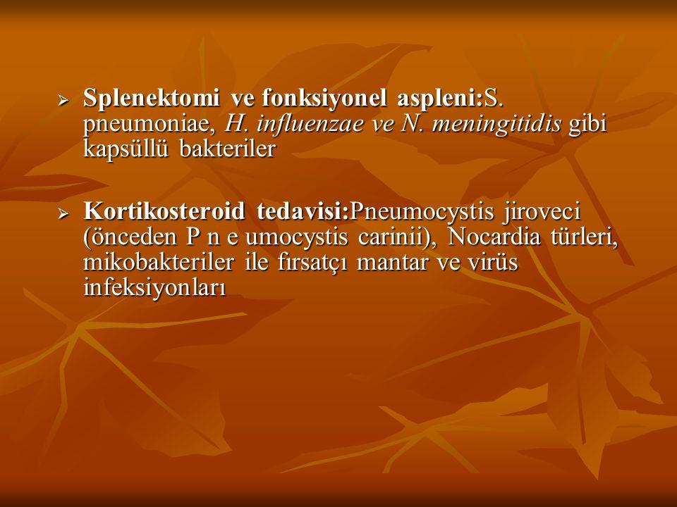 Splenektomi ve fonksiyonel aspleni:S. pneumoniae, H. influenzae ve N