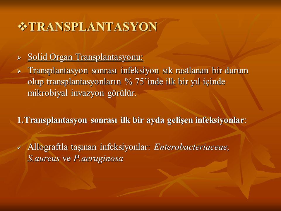 TRANSPLANTASYON Solid Organ Transplantasyonu: