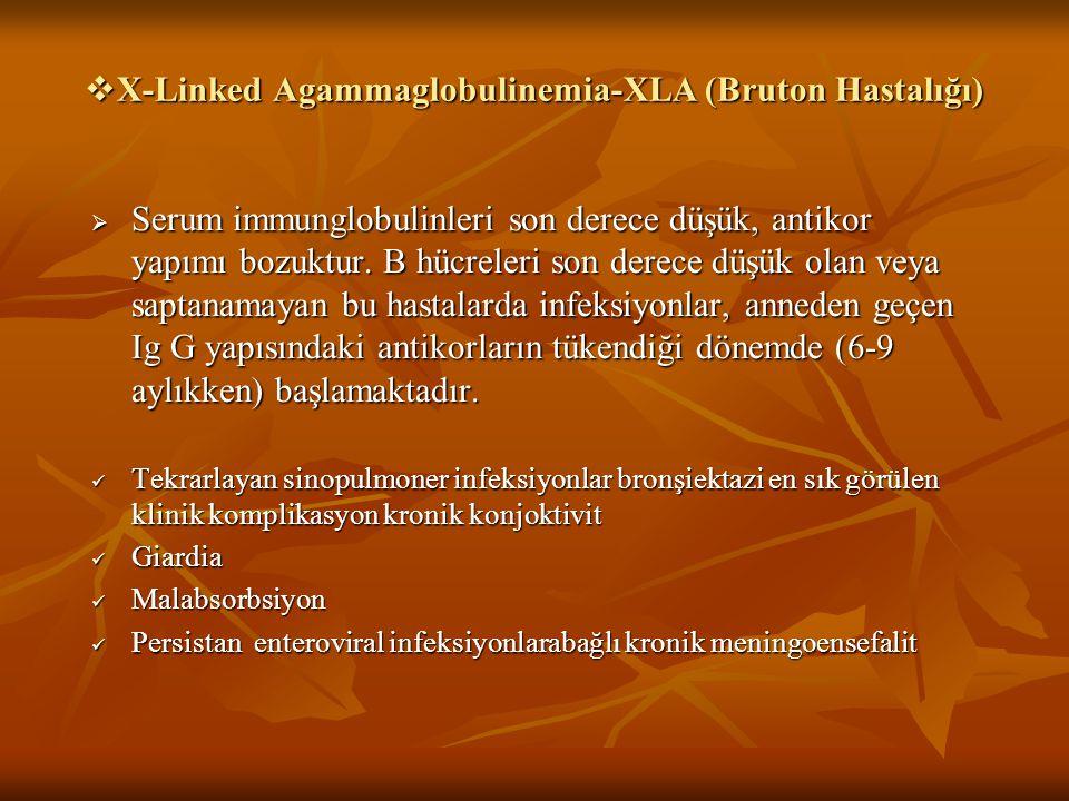 X-Linked Agammaglobulinemia-XLA (Bruton Hastalığı)
