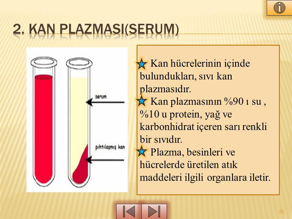 2. KAN PLAZMASI(SERUM) Kan hücrelerinin içinde bulundukları, sıvı kan plazmasıdır.