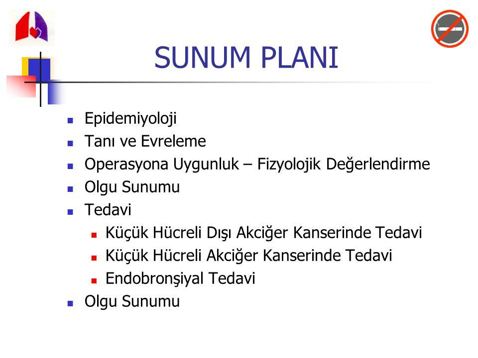 SUNUM PLANI Epidemiyoloji Tanı ve Evreleme