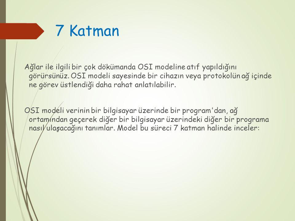 7 Katman