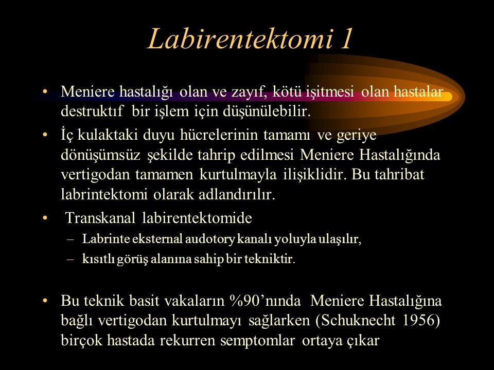 Labirentektomi 1 Meniere hastalığı olan ve zayıf, kötü işitmesi olan hastalar destruktıf bir işlem için düşünülebilir.