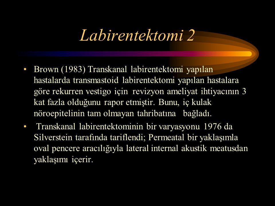 Labirentektomi 2