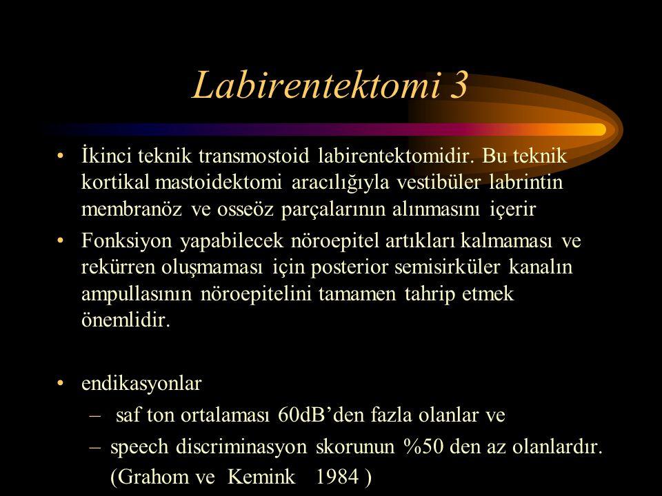 Labirentektomi 3