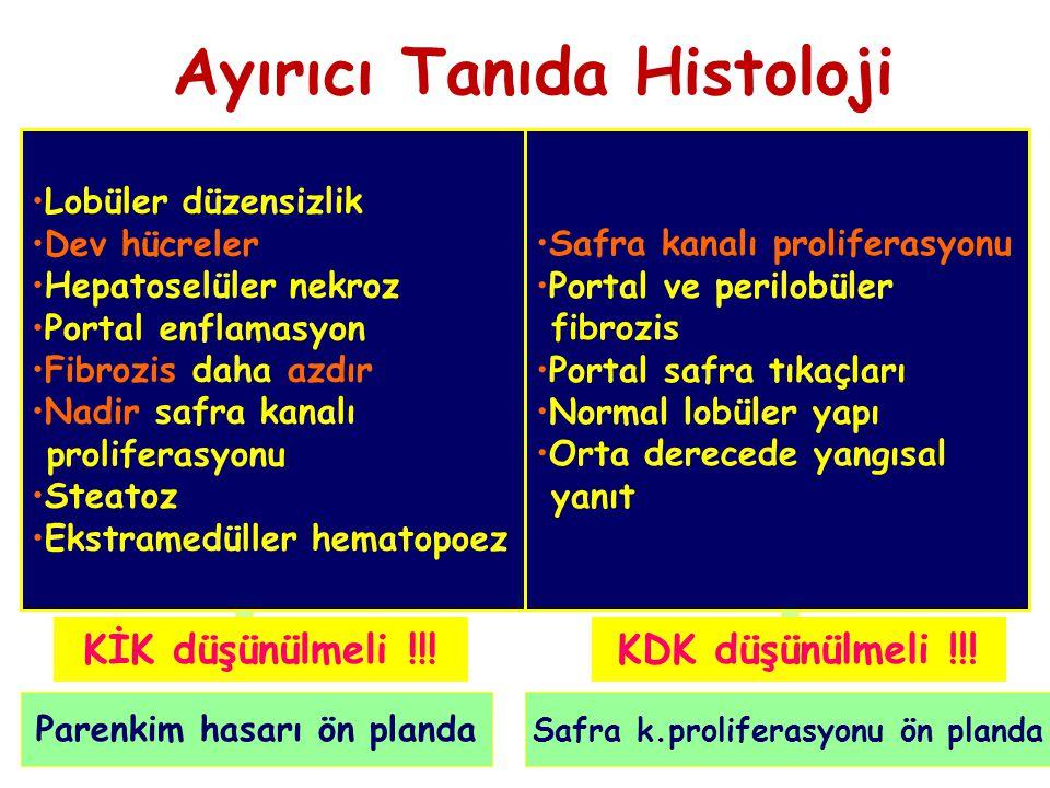Ayırıcı Tanıda Histoloji