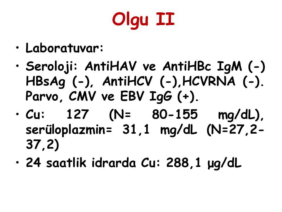 Olgu II Laboratuvar: Seroloji: AntiHAV ve AntiHBc IgM (-) HBsAg (-), AntiHCV (-),HCVRNA (-). Parvo, CMV ve EBV IgG (+).