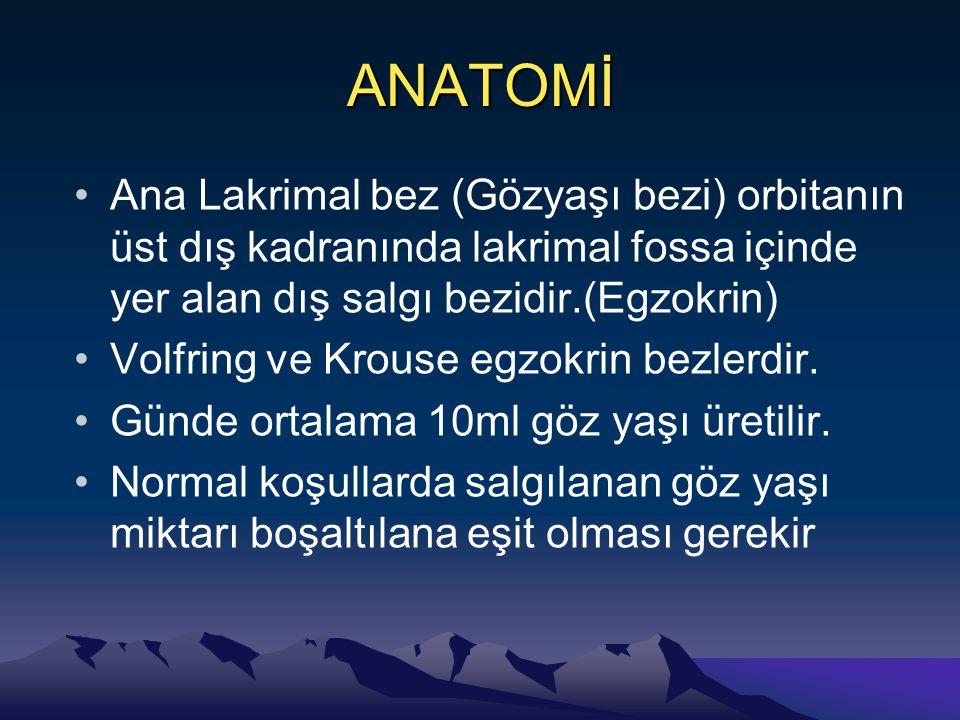 ANATOMİ Ana Lakrimal bez (Gözyaşı bezi) orbitanın üst dış kadranında lakrimal fossa içinde yer alan dış salgı bezidir.(Egzokrin)