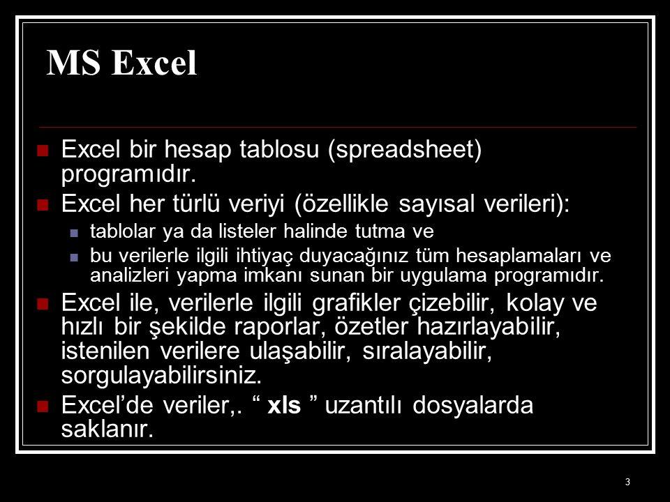 MS Excel Excel bir hesap tablosu (spreadsheet) programıdır.