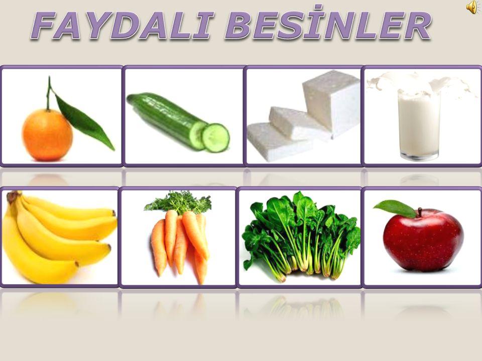 FAYDALI BESİNLER