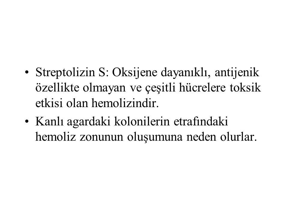 Streptolizin S: Oksijene dayanıklı, antijenik özellikte olmayan ve çeşitli hücrelere toksik etkisi olan hemolizindir.