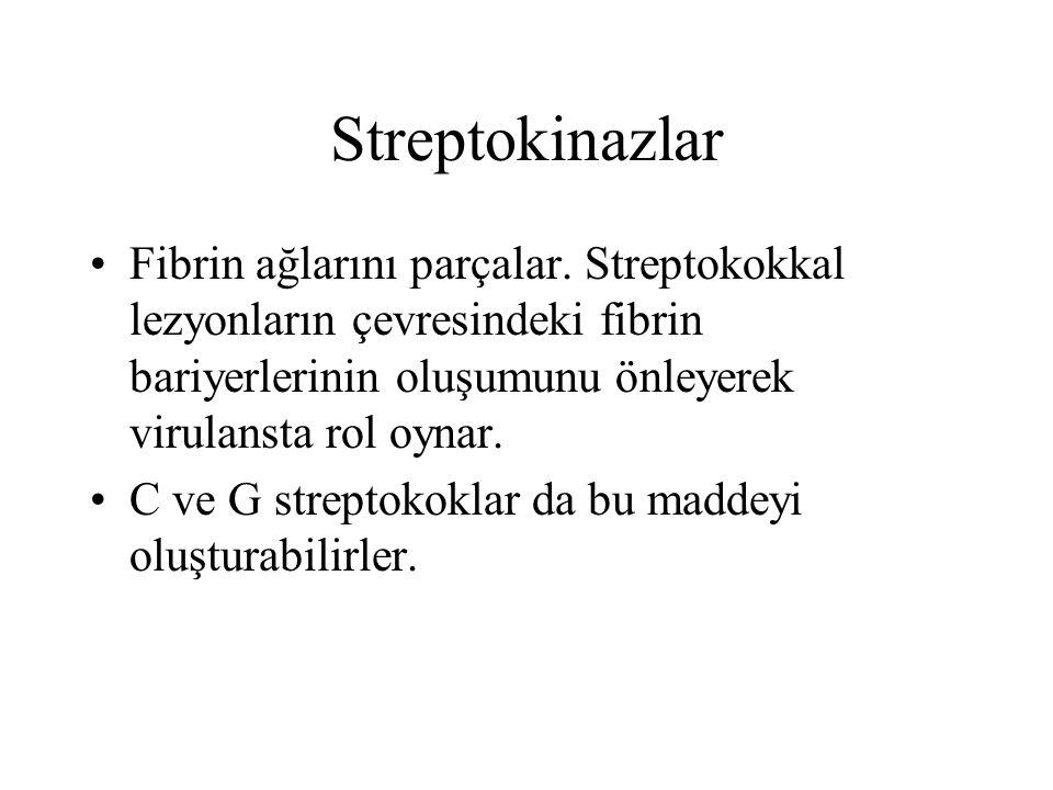 Streptokinazlar Fibrin ağlarını parçalar. Streptokokkal lezyonların çevresindeki fibrin bariyerlerinin oluşumunu önleyerek virulansta rol oynar.
