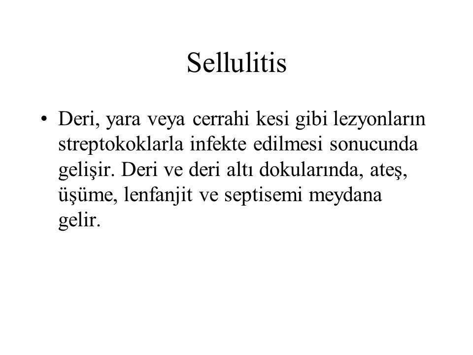 Sellulitis