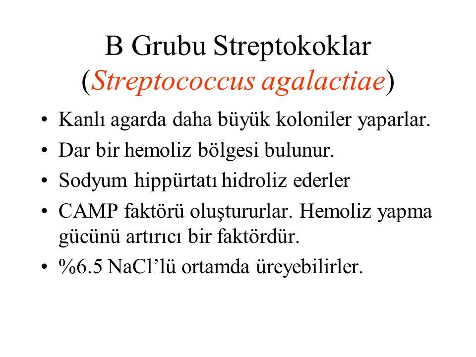 B Grubu Streptokoklar (Streptococcus agalactiae)