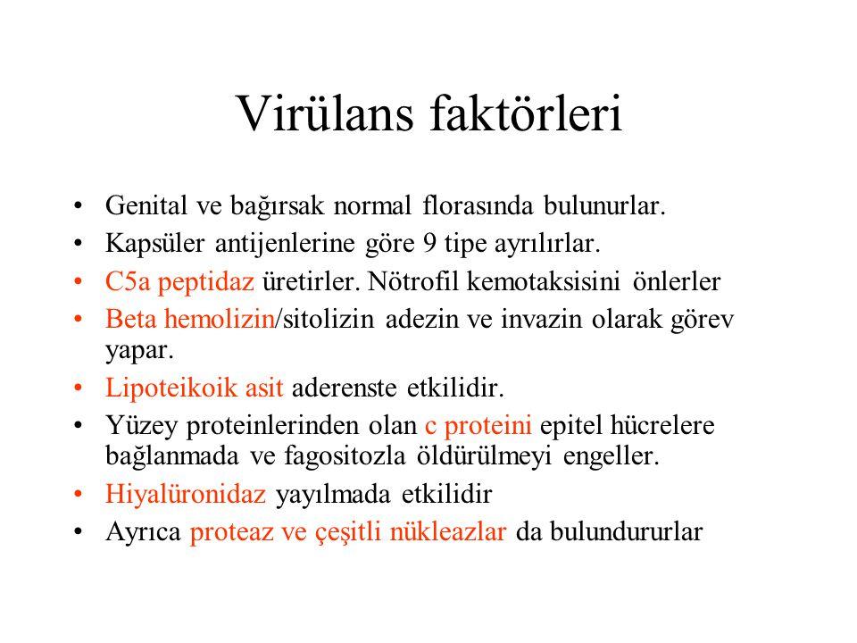 Virülans faktörleri Genital ve bağırsak normal florasında bulunurlar.