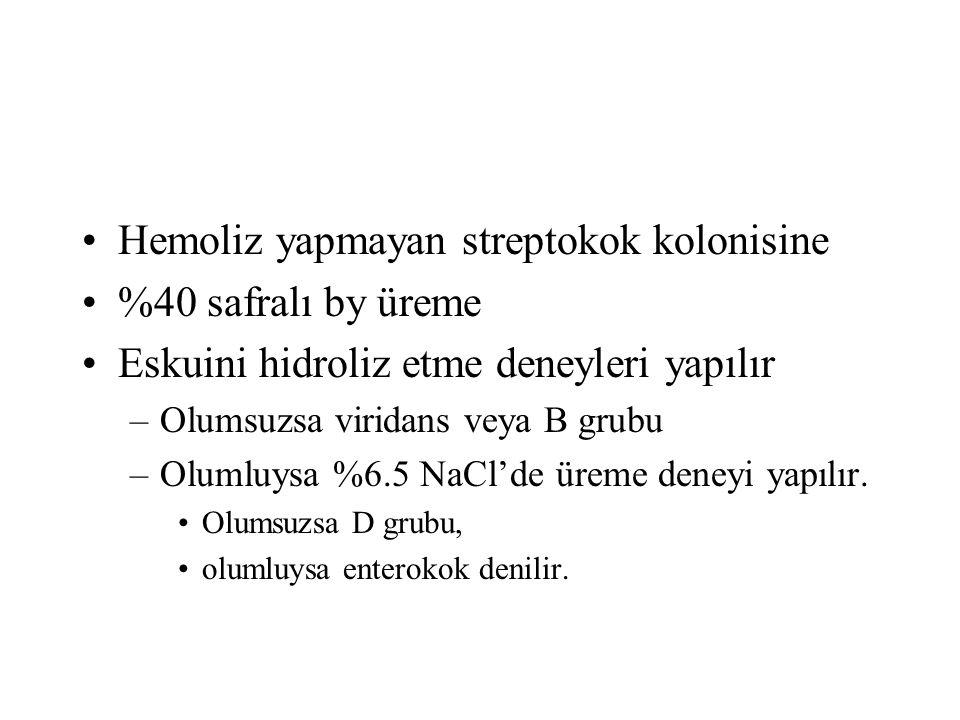 Hemoliz yapmayan streptokok kolonisine %40 safralı by üreme