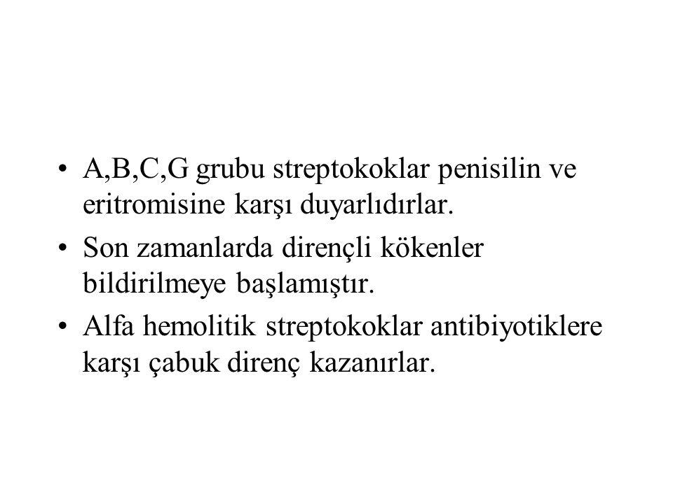 A,B,C,G grubu streptokoklar penisilin ve eritromisine karşı duyarlıdırlar.