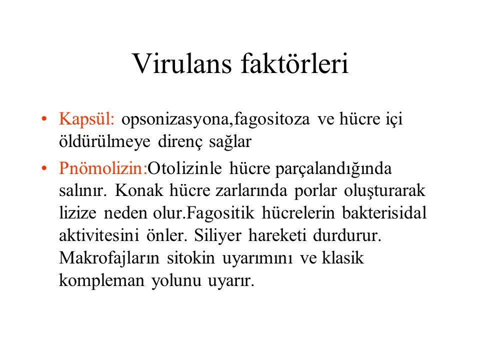 Virulans faktörleri Kapsül: opsonizasyona,fagositoza ve hücre içi öldürülmeye direnç sağlar.