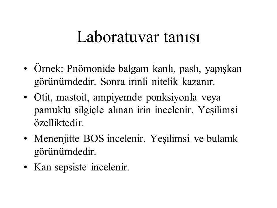 Laboratuvar tanısı Örnek: Pnömonide balgam kanlı, paslı, yapışkan görünümdedir. Sonra irinli nitelik kazanır.