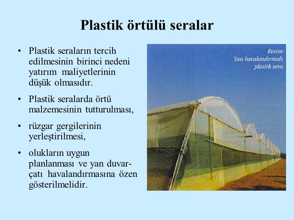 Plastik örtülü seralar