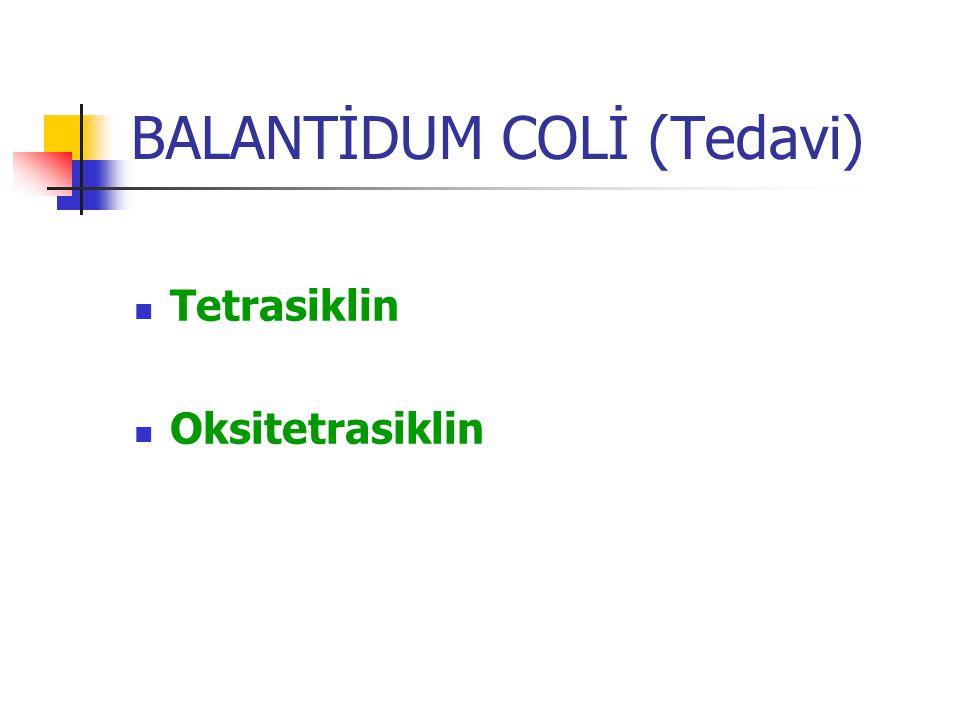 BALANTİDUM COLİ (Tedavi)