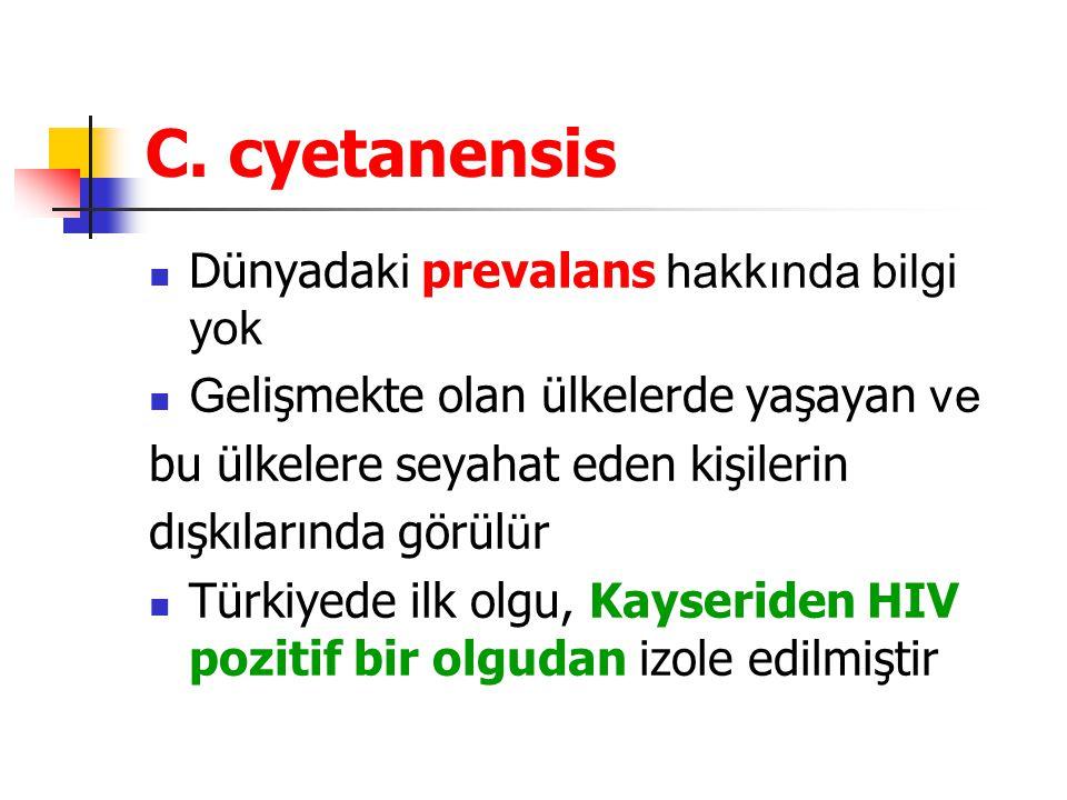 C. cyetanensis Dünyadaki prevalans hakkında bilgi yok