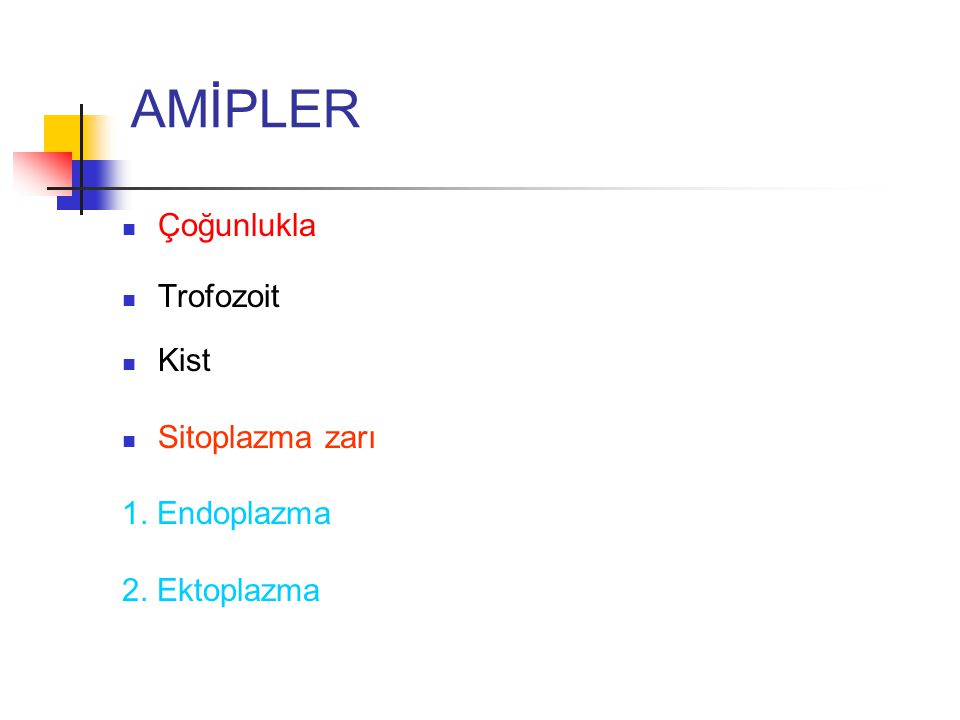 AMİPLER Çoğunlukla Trofozoit Kist Sitoplazma zarı 1. Endoplazma
