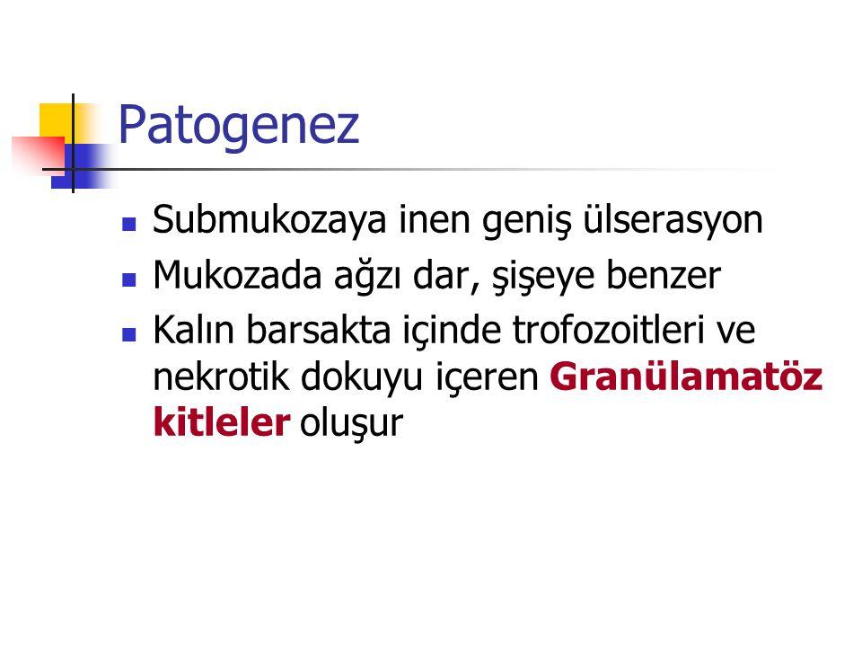 Patogenez Submukozaya inen geniş ülserasyon