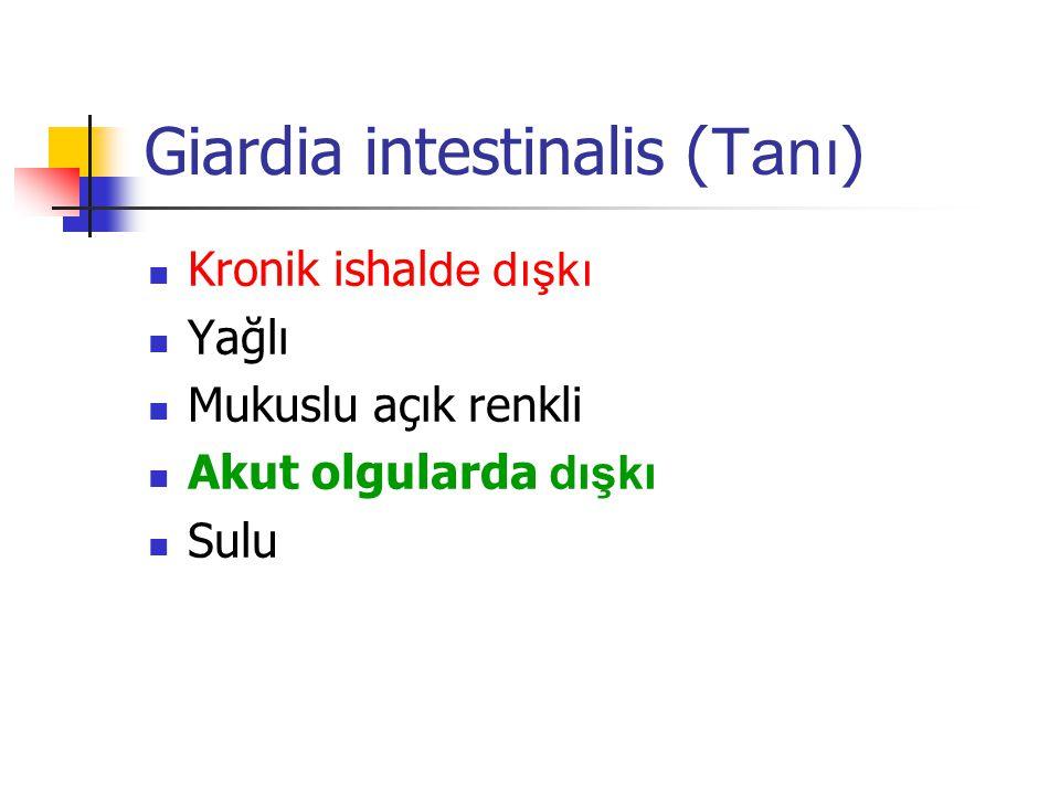 Giardia intestinalis (Tanı)
