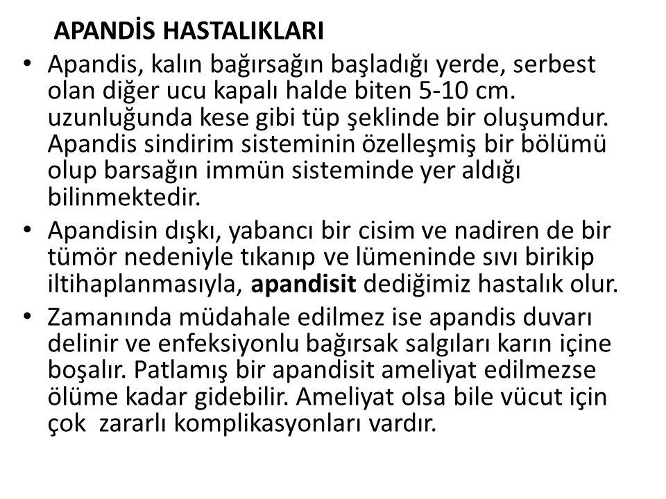 APANDİS HASTALIKLARI