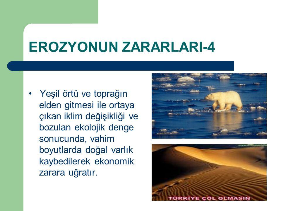 EROZYONUN ZARARLARI-4