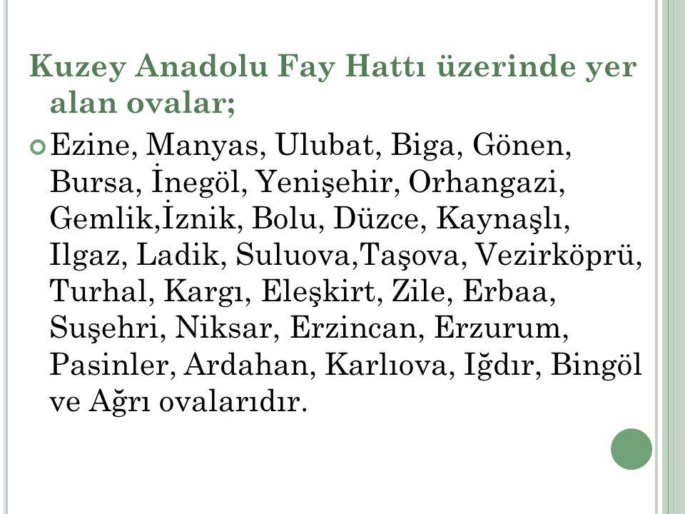 Kuzey Anadolu Fay Hattı üzerinde yer alan ovalar;