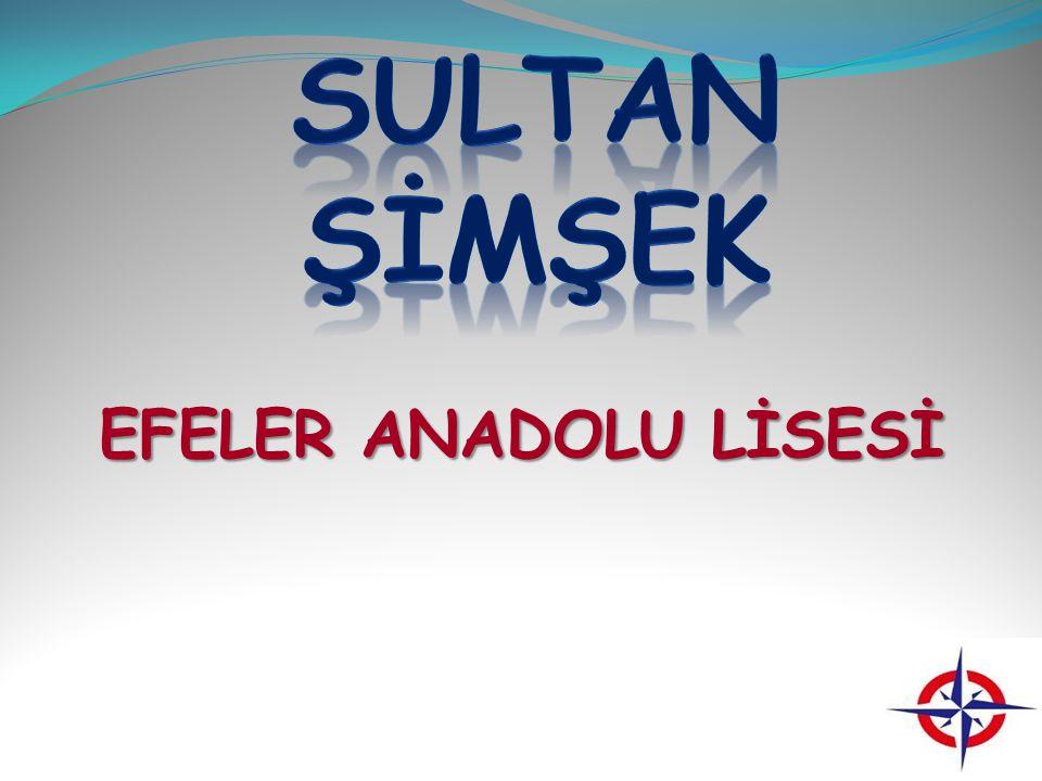 SULTAN ŞİMŞEK EFELER ANADOLU LİSESİ