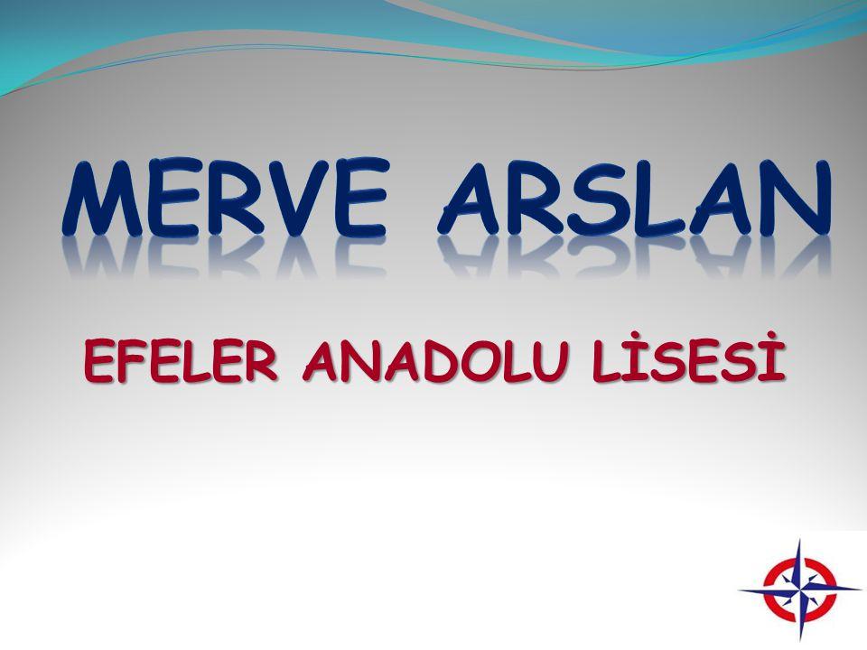 MERVE ARSLAN EFELER ANADOLU LİSESİ