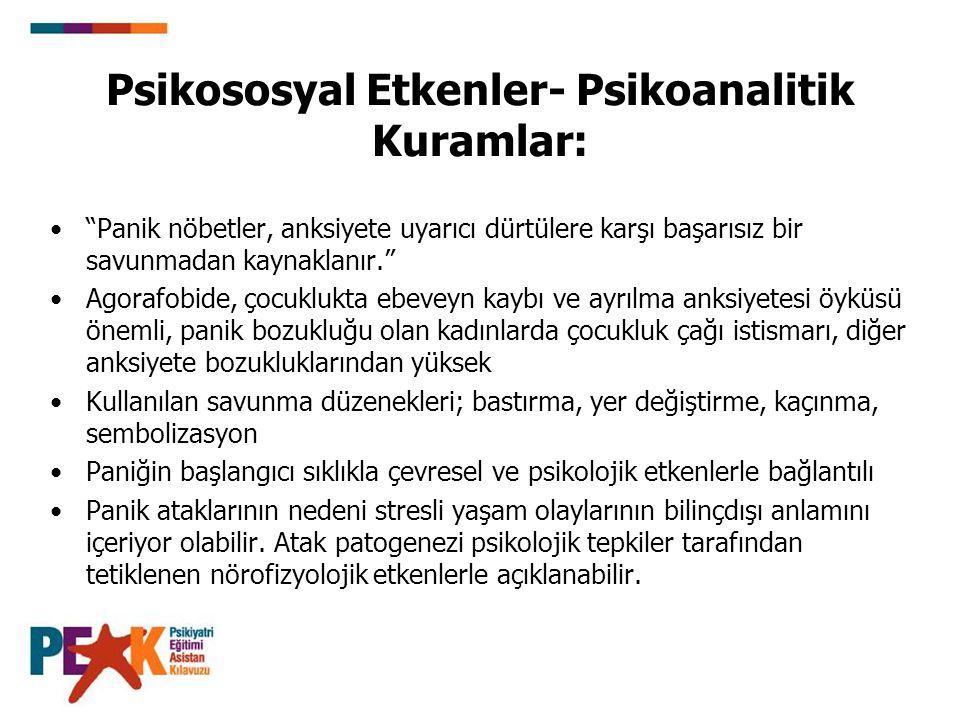 Psikososyal Etkenler- Psikoanalitik Kuramlar: