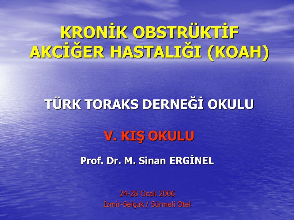 Prof. Dr. M. Sinan ERGİNEL 24-28 Ocak 2006 İzmir-Selçuk / Sürmeli Otel