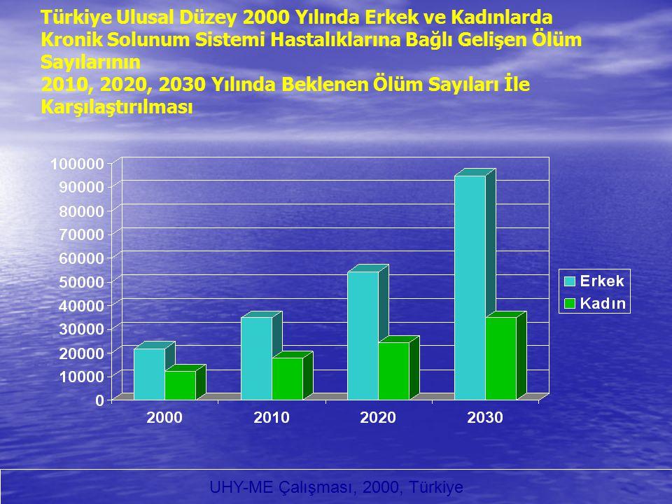 UHY-ME Çalışması, 2000, Türkiye
