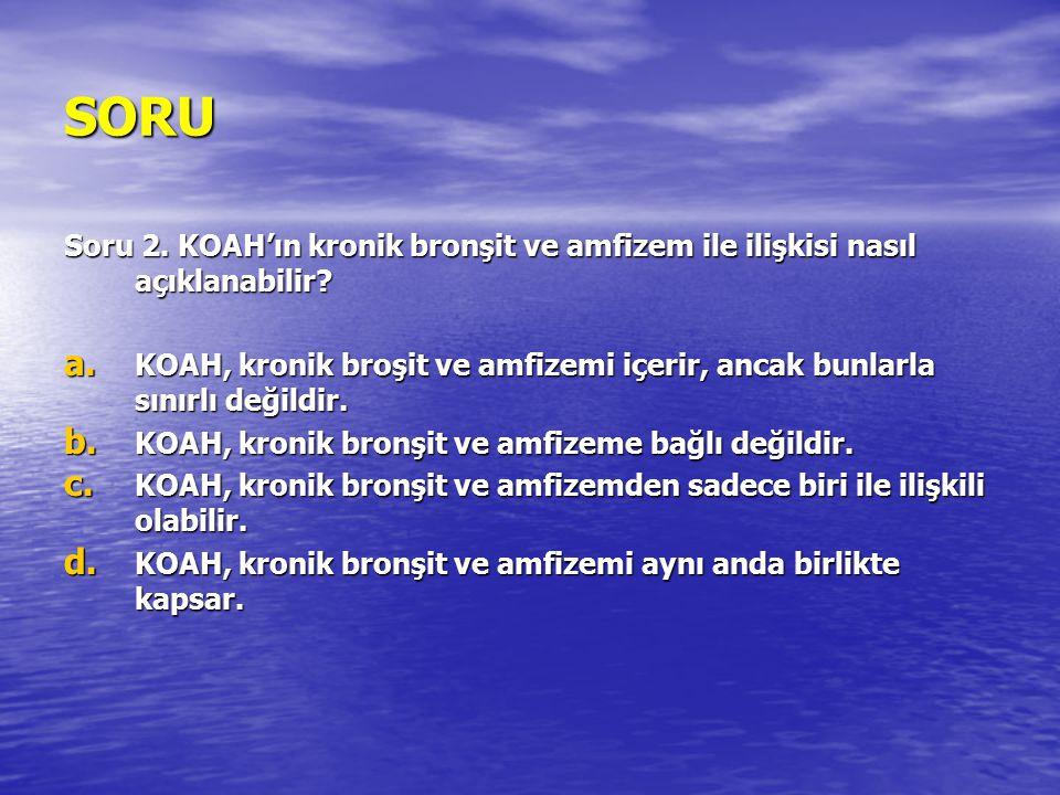 SORU Soru 2. KOAH'ın kronik bronşit ve amfizem ile ilişkisi nasıl açıklanabilir