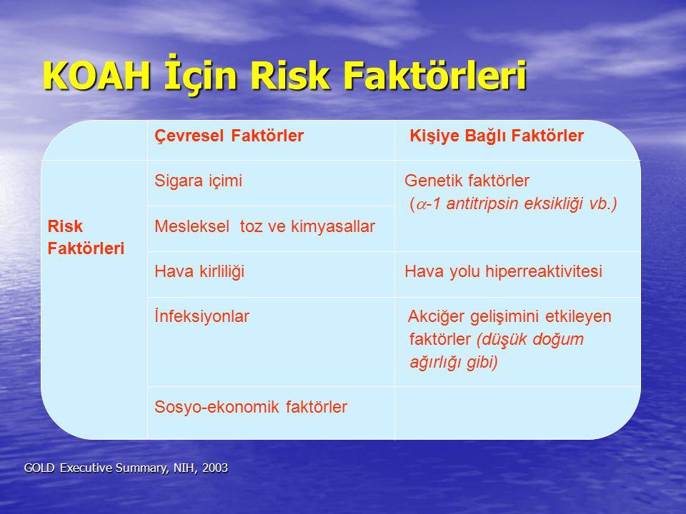 KOAH İçin Risk Faktörleri