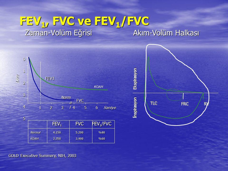 FEV1, FVC ve FEV1/FVC Zaman-Volüm Eğrisi Akım-Volüm Halkası