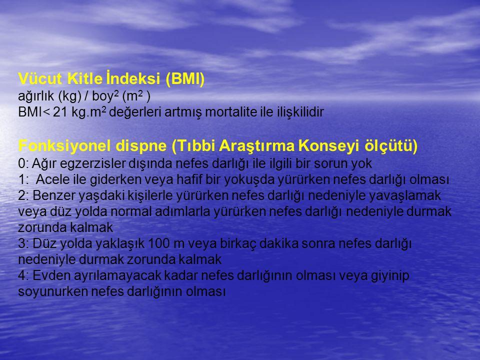 Vücut Kitle İndeksi (BMI)