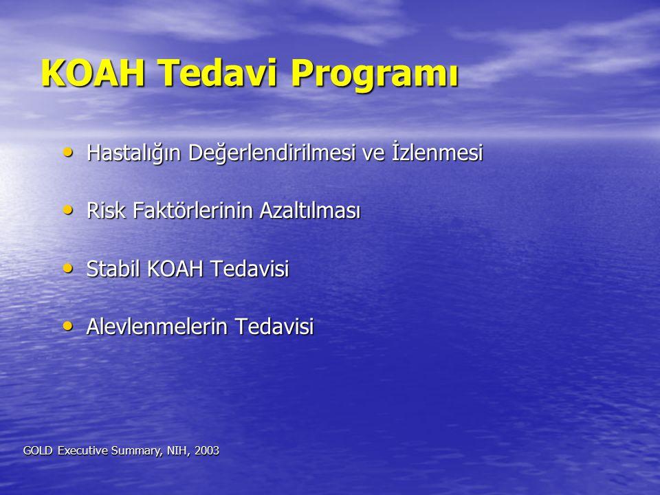 KOAH Tedavi Programı Hastalığın Değerlendirilmesi ve İzlenmesi