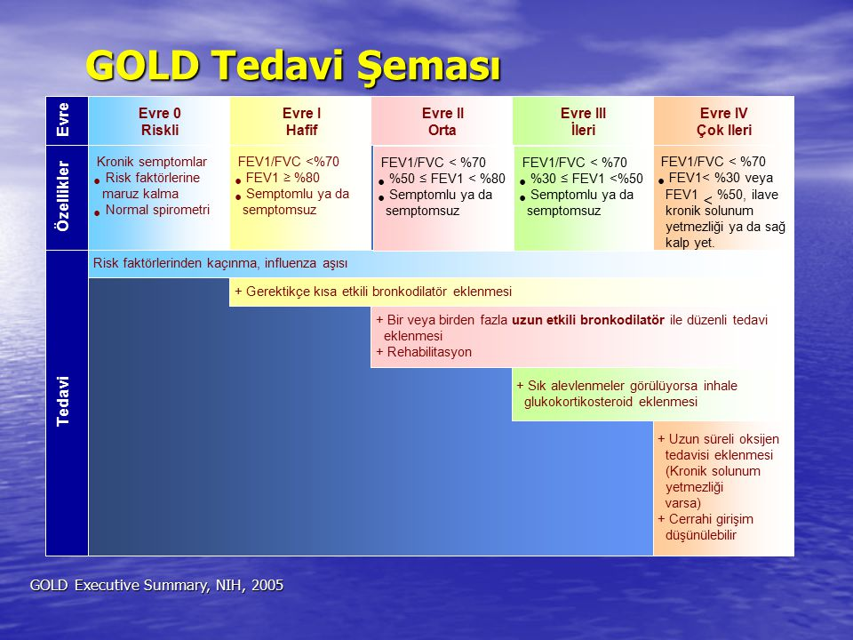 GOLD Tedavi Şeması Evre Özellikler Tedavi Evre 0 Riskli Evre I Hafif