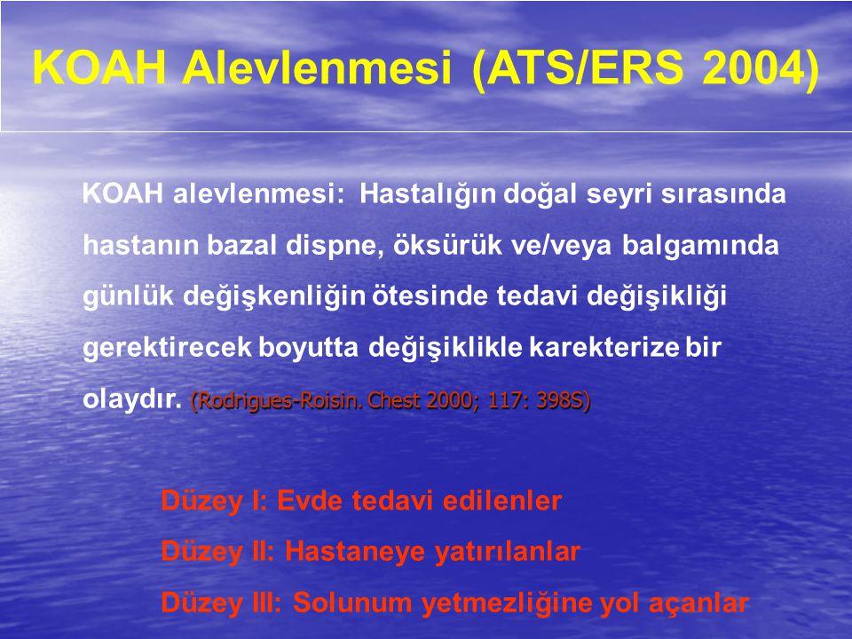 KOAH Alevlenmesi (ATS/ERS 2004)