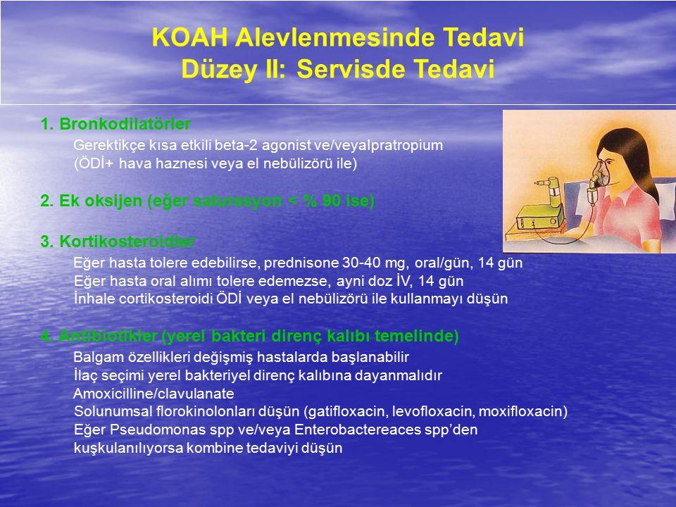 KOAH Alevlenmesinde Tedavi Düzey II: Servisde Tedavi